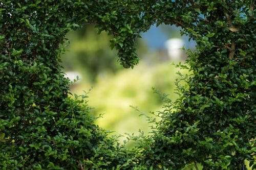 Combattere la gelosia in amore